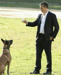 Mr Reese & Bear Person of Interest