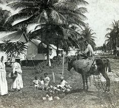 Typical Scene in Port Antonio, Jamaica | by The Caribbean Photo Archive