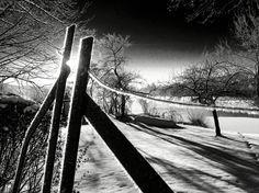 Schwarz Weiß Winter