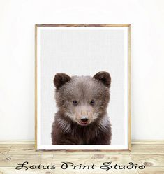 Baby Bear Print, Digital Download, Woodland Nursery Decor, Printable Kids Room, Wall Art Print, Bear Cub Nursery Animal, Colour Photo, #166