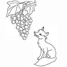 Человека мышцы, картинки лисица и виноград рисовать