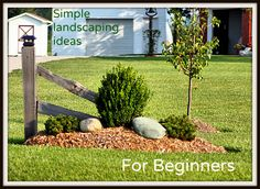 Homeowners can quickly tire of the way their yard is landscaped - or maybe not even landscaped at all. Everyone wants a pretty, well-kept yard that looks planned. So what if you've never landscaped before? Many people are scared to try it themselves, thinking that landscaping is best left up to professionals. Good news: it's not! There are plenty of simple ways to spruce up a yard long-term and change the topography of your front or back yard. You don't have to be an expert on landscape…