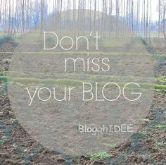 by Blogghidee don't miss your blog http://www.blogghidee.com/2014/02/04/perche-vuoi-cancellare-il-tuo-blog/