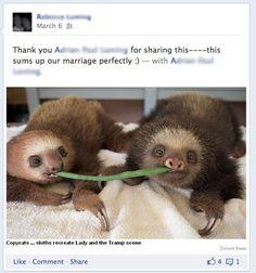 additional sos sloths snl digital short