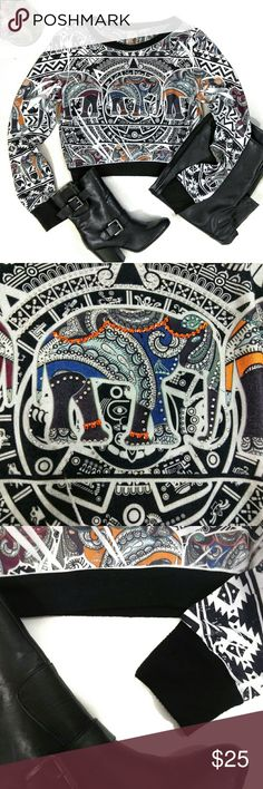 """NWOT BLUSH Elephant Aztec Long Sleeve Mid/Crop Top NWOT. Perfect condition!  Size Medium. 17"""" pit to pit, 17"""" shoulder to hem, 23.5"""" sleeves, 13"""" across hem band. Does stretch. All measurements are flat across.   This top is incredible! Super soft! Vibrantly colored elephants atop black and white ethnic Mayan Aztec designs! Center elephant is surrounded by orange and iridescent rhinestones! Would look hot with black leather pants and boots!   (Find the BB Dakota Vegan Leather Pants, and…"""