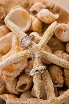 Photo idea for rings. (great for Katrina's beach themed wedding)