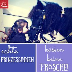 #pferdepflege, #Pferdezubehör, #Pferdefutter. #Mineralfutter im www.emma-pferdefuttershop.de