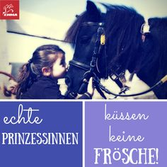Pferdesprüche & Vielseitigkeit Pferd-emma-pferdefuttershop.de(4) 2