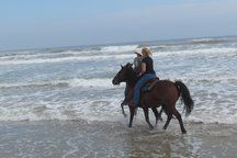 Ride YOUR horse on the beach!