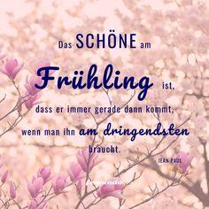 3 Bücher, die Lust auf den Frühling machen | #süden #frühling #frühlingsanfang #reisen #bücher #mittelmeer #sonne