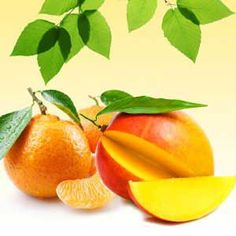Mango Tangerine Fragrance Oil | Natures Garden Scents