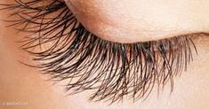 We know how important it is to maintain yourself and that's why we bring 20 great hacks for natural beauty. These hacks are just so amazing and are completely natural to not only restrain your beauty but increase it too. Thicker Eyelashes, Longer Eyelashes, Flutter Eyelashes, Beauty Makeup, Eye Makeup, Makeup Blog, Hair Beauty, Face Care Tips, Jojoba