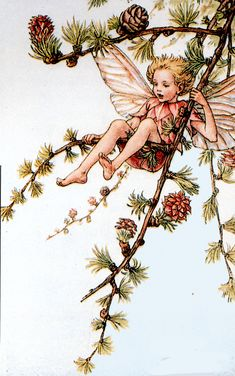 "Vintage print 'The Larch Fairy' by Cicely Mary Barker from ""The Book of the Flower Fairies""; Poem and Pictures by Cicely Mary Barker, Published by Blackie & Son Limited, London [Flower Fairies - Spring] Cicely Mary Barker, Fairy Dust, Fairy Land, Fairy Tales, Flower Fairies, Spring Fairy, Vintage Fairies, Beautiful Fairies, Fantasy Illustration"