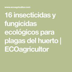 16 insecticidas y fungicidas ecológicos para plagas del huerto | ECOagricultor