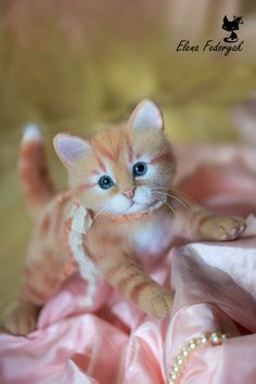 Needle felted toy that look so real!