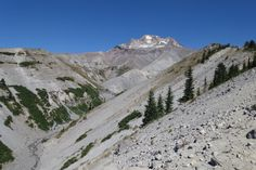 The PCT on the northwestern side of Mt. Hood.