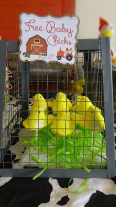 Peep chicks at a farm themed baby shower party! See more party ideas at CatchMyParty.com!