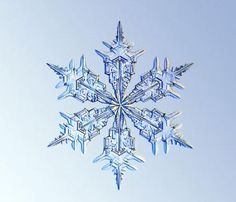 snowflake photography by kenneth libbrecht Snow Tattoo, Snow Flake Tattoo, Snowflake Photography, Snowflake Images, Crystal Snowflakes, Real Snowflakes, Snowflakes Falling, Ice Crystals, Snow And Ice