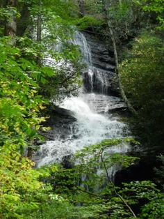 Pisgah Forest National Park, North Carolina