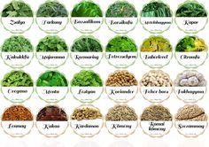 Fűszercímkék A4_1 Spice Jar Labels, Spice Jars, Hobbies And Crafts, Farmers Market, Helpful Hints, Spices, Herbs, Plants, Diy
