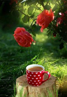Sunday Coffee, Good Morning Coffee, Coffee Break, Coffee Heart, Coffee Love, Coffee Cups, Tea And Books, Red Cottage, Good Morning Greetings