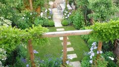 could do this in back yard for focal point and then have it go to a topiary garden