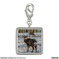 Red Deer in Snow Charm