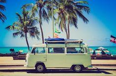 VW bus summer beach vintage trees hippie retro palm volkswagen van bus