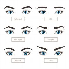 hair beauty - 6 basic eyebrow shape types Classic type and other Vector illustration eyebrows with eyes stock vector illustration with captions Fashion female brow Trimming Poster Types Of Eyebrows, Eyebrows Goals, How To Draw Eyebrows, Korean Eyebrows, Types Of Eyes, Eyebrow Makeup Tips, Eyebrow Pencil, Permanent Makeup Eyebrows, Makeup Ideas