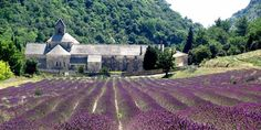 The South of France Provence, South Of France, Bed And Breakfast, Luxury Bedding, Europe, Tours, Cabin, House Styles, Building