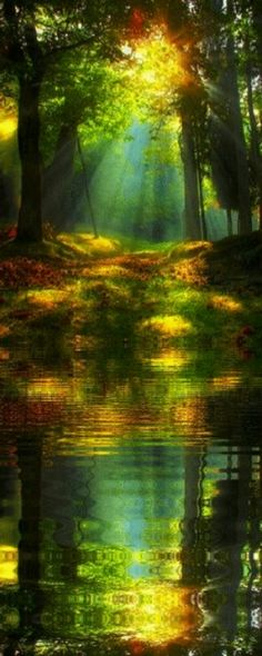 Beautiful Images of Nature Beauty