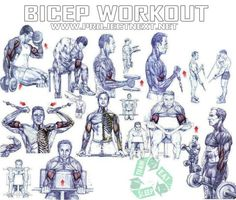 Bicep Workout - Healthy Fitness Exercises Gym Press Tricep