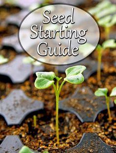 #Gardening : How to Start Seedlings Indoors | My Favorite Things