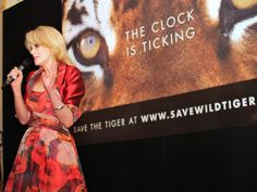 Joanna Lumley campaigning to Save the Tigers