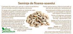 Sunflower seeds @DeliciiSanatoas Sunflower Seeds, Almond, Cancer, Food, Eten, Almond Joy, Almonds, Meals, Sunflowers
