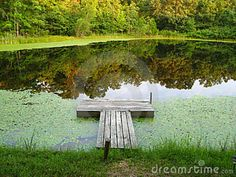 Dock On A Tranquil Pond Royalty Free Stock Photos - Image: 14679218