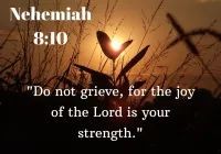 Short Bible Verses About Nehemiah, Regular Update Bible Verses, Short Bible Verses, Must Read and Receive Our Blessings in Our Life. And share these Verses Short Bible Verses, Powerful Bible Verses, Joy Of The Lord, Gods Glory, Worship Songs, Gospel Music, Eagle, Reading