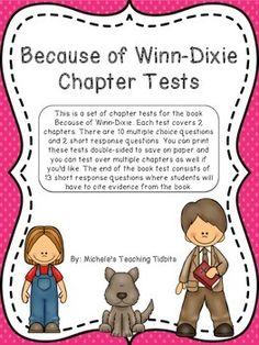 Novel study for Because of Winn Dixie   TeacherLingo com Pinterest