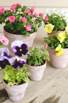 How to white wash a terra cotta pot   Summer front porch decor