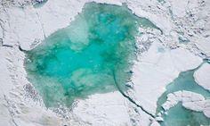 États-Unis protègent de façon permanente certaines des zones marines les plus importantes de l'Arctique Le président Obama a annoncé que 115 millions d'acres sont maintenant hors des limites de la production de pétrole et de gaz
