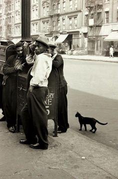 Helen Levitt     Young Men and Cat, Harlem, New York     c.1942