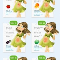Interesting facts about the fetus growing. Nice size comparison to fruits.