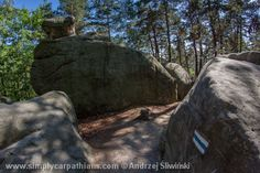 Natural attraction called Petrified Town #Poland http://simplycarpathians.com/index.php/en/self-drive-vacatio ns
