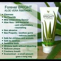 Forever living aloe vera Bright Tooth Gel Natural Mint Flavour No Fluoride Aloe Barbadensis Miller, Forever Living Aloe Vera, Forever Aloe, Forever Bright Toothgel, Forever Living Business, Home Teeth Whitening Kit, Receding Gums, Forever Living Products, Cleaning