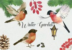 Winter Garden watercolor cliparts by Elena Terzi on @creativemarket