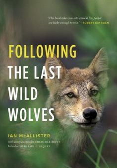 For twenty years, Ian McAllister has explored the rugged north coast of British Columbia, known as the Great Bear Rainforest, one of the last places on the planet where wolves live in an undisturbed way. This book describes McAllister's experiences over that period following two packs of wolves, one that dominates the extreme outer coastal islands, and another that lives farther inland in the heart of the temperate rainforest.