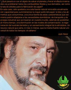 JACK HERER teoría cáñamo la verde revolución Wicked, Fiber, Growing Up, Green