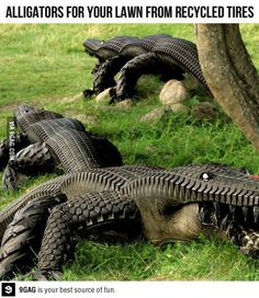 Aligators made of recycled tires