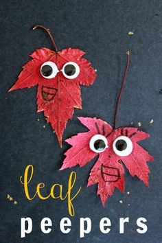 Leaf Peepers -- a fun autumn leaf craft for kids! - ahhh - thats what it is.  Guess I can add it back to my fall bucket list :)