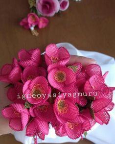 Görüntünün olası içeriği: yiyecek Needle Lace, Bargello, Flower Crafts, Needlepoint, Raspberry, Like4like, Diy Crafts, Embroidery, Flowers